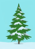 Landscape, Christmas Fir Tree Stock Images