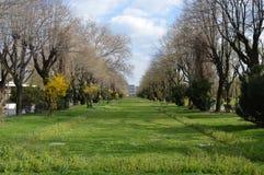 Landscape of Cismigiu Park Royalty Free Stock Photography