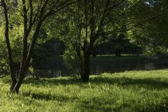 Landscape in city park with lake.  Stock Photography