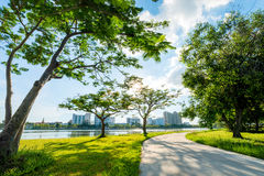 Landscape in city park with lake on sunset background Stock Photo