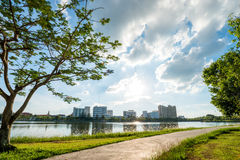 Landscape in city park with lake on sunset background Royalty Free Stock Image