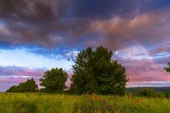 Landscape,cityscape,Parks. Rainbow over the poppy fields Stock Photography
