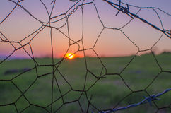 Landscape,cityscape,Parks. Sunset over the fields looked Stock Image