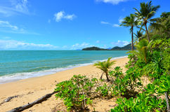 Landscape of Clifton beach near Cairns Queensland Australia Stock Photography