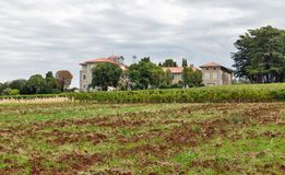 Landscape close to Porec, Crioatia. Stock Photos