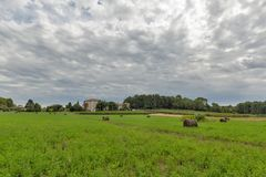 Landscape close to Porec, Crioatia. Stock Photo