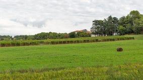 Landscape close to Porec, Crioatia. Stock Photography