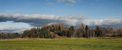 Landscape with clouds, field and forest Stock Photos