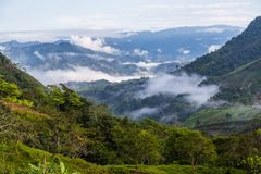 Landscape with clouds, jungles, mountains and crops Andes, Ecuad. Landscape with clouds, jungles, mountains and crops of the northwestern region of the Andes Stock Image