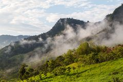 Landscape with clouds, jungles, mountains and crops Andes, Ecuad. Landscape with clouds, jungles, mountains and crops of the northwestern region of the Andes Royalty Free Stock Photos