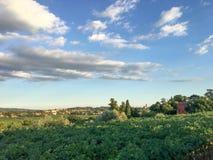 Countryside landscape, Vineyards in Valpolicella, Province of Verona, northern Italy, Italy. Landscape with clouds and vineyards, in the Valpolicella wine region royalty free stock photos