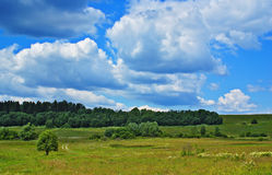 Landscape with cloudy sky. Summer landscape with cloudy sky, green grass and trees Royalty Free Stock Image