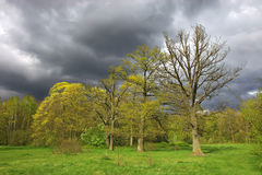 Landscape with cloudy sky. A landscape with cloudy sky royalty free stock images