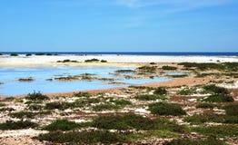 Sardegna, Sinis wetland. Landscape of coastal pond and beach of western Sardinia, Italy royalty free stock photo