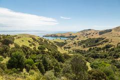 Landscape of a coastline at Wilson Bay, New Zealand Stock Images