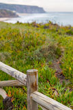 Landscape coastline with wooden fance and plants Royalty Free Stock Images