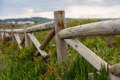 Landscape coastline with wooden fance and plants Royalty Free Stock Image