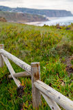 Landscape coastline with wooden fance and plants Stock Images
