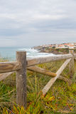 Landscape coastline with wooden fance and plants Stock Photography