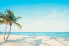 landscape of coconut palm tree on tropical beach royalty free stock photos