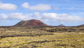 Landscape with cold lava flow  in Lanzarote Royalty Free Stock Images