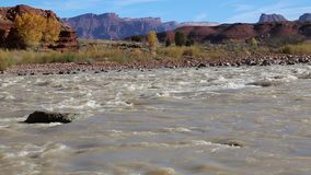 Landscape with Colorado River stock video