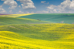 Landscape of colorful hills, springtime beautiful day Royalty Free Stock Photos