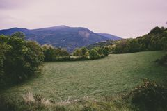 Landscape composed of a green meadow. With a mount in the background stock images