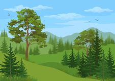 Mountain Landscape with Trees Royalty Free Stock Image