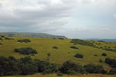 GREEN HILLS UNDER CLOUDY SKY Stock Photo