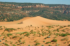 Landscape in Coral Pink Sand Dunes SP 1 Stock Photography