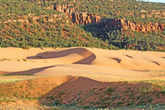 Landscape in Coral Pink Sand Dunes SP 2 Royalty Free Stock Image