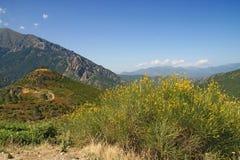 Landscape in Corsica Stock Image