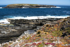 Landscape at Couedic, Kangaroo Island, Australia Stock Photos