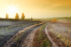 Landscape with country road Royalty Free Stock Image