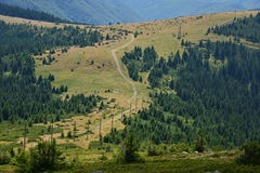 Landscape with country road in the Apuseni mountains. Royalty Free Stock Photos