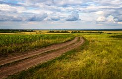 Сountry road in autumn fields Stock Photos
