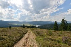 Landscape with country road to the Belis lake. Royalty Free Stock Image