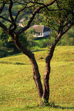 Landscape at the country side. Landscape image at the country side, with a country house framed by a tree stock photos