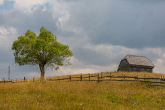 Landscape of the country in the Transylvania region Royalty Free Stock Photography