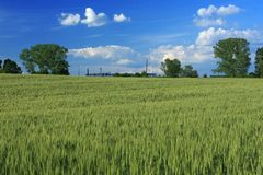 Landscape of a countryside Stock Images