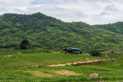 landscape at countryside Stock Photography