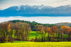 Landscape of a countryside with autumn trees and Alps Stock Images