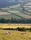 Landscape countryside hills Stock Images