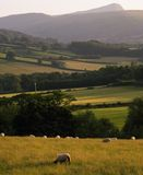 Landscape countryside hills Stock Photo