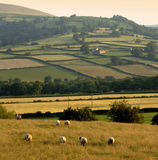 Landscape countryside hills mountains scenery Stock Photography