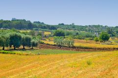 Landscape of the countryside of Martina Franca (TA Stock Images