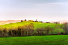 Landscape of countryside at sunset.Tuscany, Italy. Stock Images