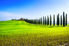 Landscape of countryside in Val d'Orcia province.Tuscany, Italy. Stock Photo
