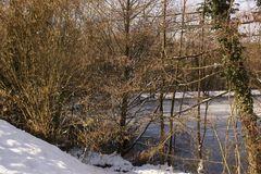 Landscapes wintry - Some snow in forest. Landscape covered with snow in forest, around a lake ice-cold and covered with hoarfrost. The water is icy, The lake is Royalty Free Stock Photo